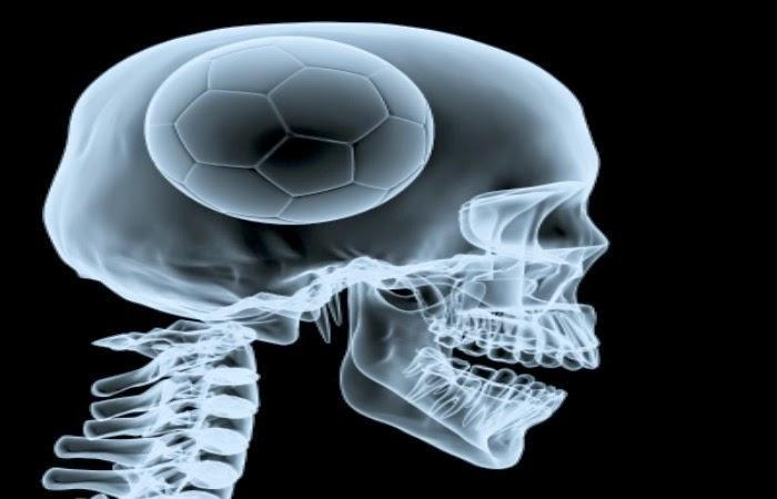 Obraz: głowa kibica piłki nożnej przed Mundialem