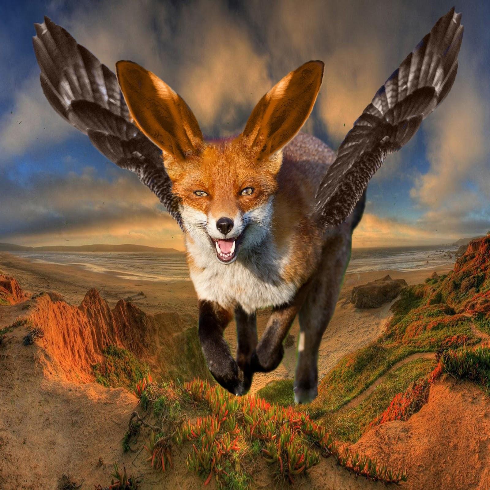 IRunOnCaffiene: Hybrid Fox