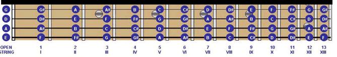 nada pada fret gitar bas
