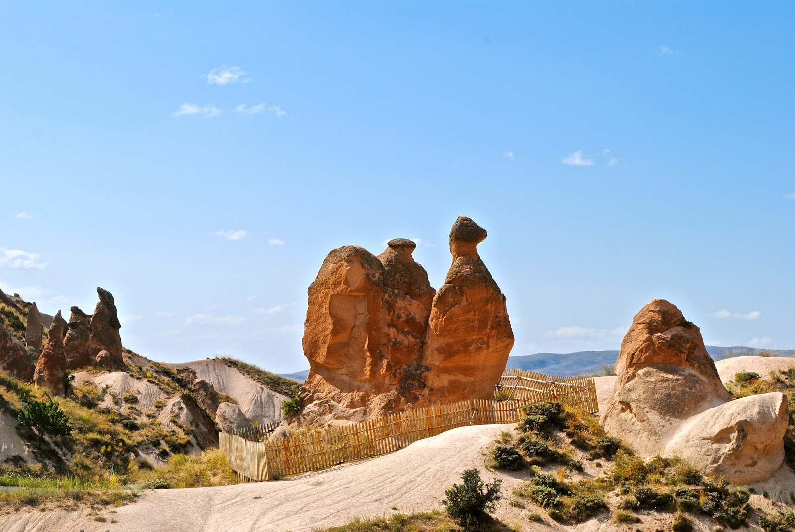 Things to do in Cappadocia : Devrent Valley Camel