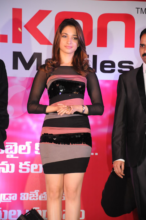 tamanna at celkon lucky draw winners prize presentation cute stills