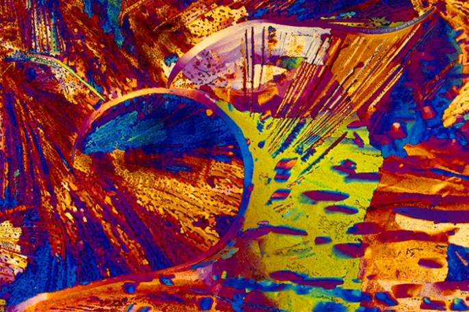 licores se vuelven hermosos bajo el microscopio