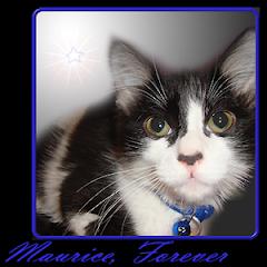 Maurice  RIP