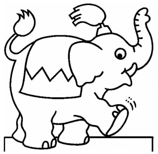 Desenho Elefante Para Colorir