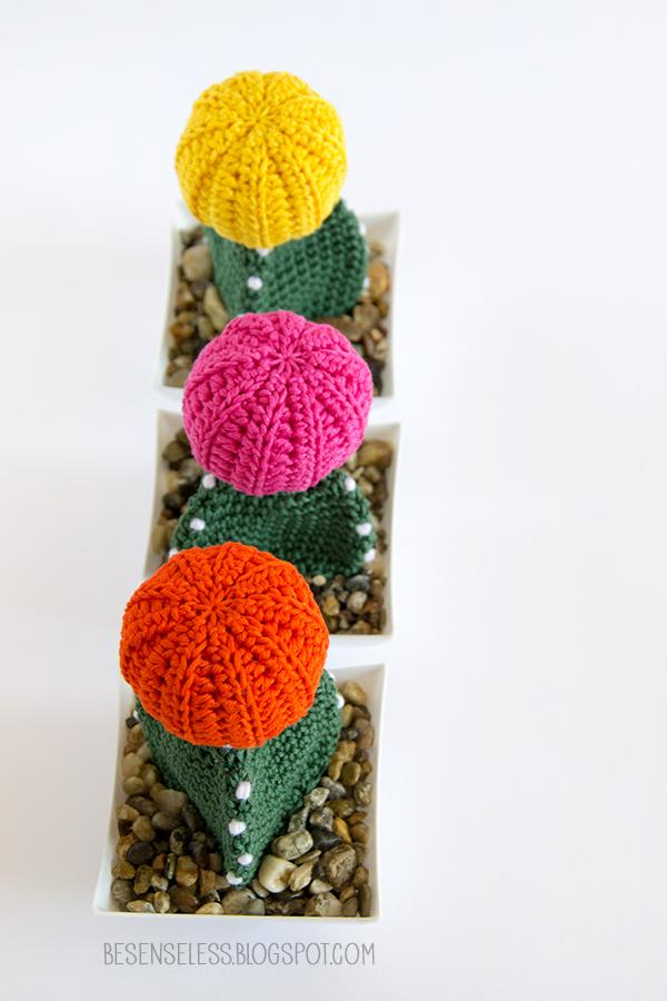 Mas de 1000 imagenes sobre cactitos en Pinterest Cactus ...