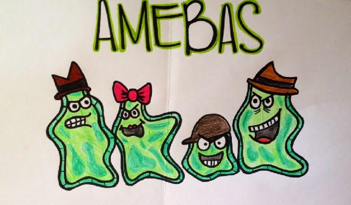 AMEBAS!