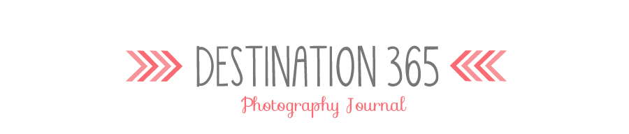 Destination 365