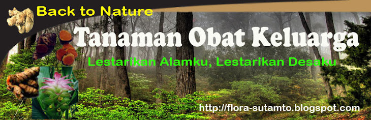 "Tanaman Obat Keluarga ""Back to Nature"""