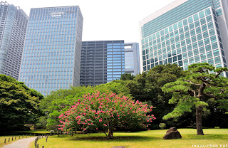 Taman Hijau Di Tengah Bandar Raya Tokyo