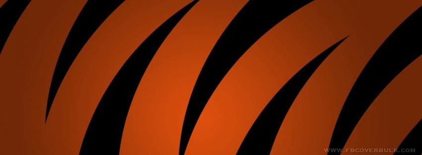 Orange Lines Facebook Timeline Cover