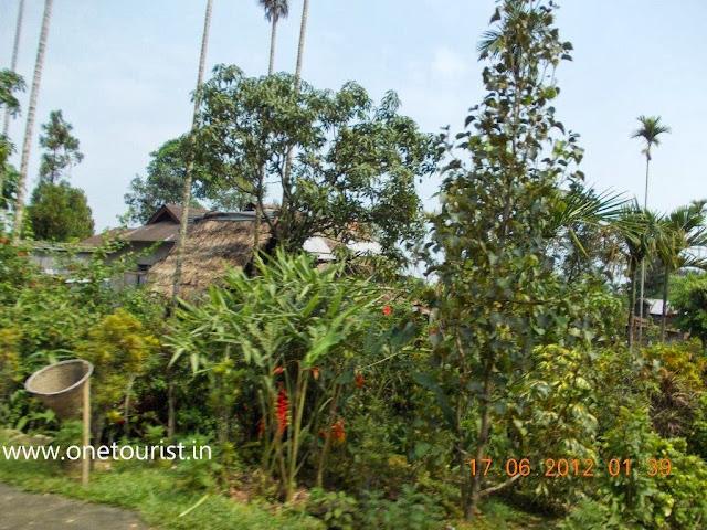 asia`s Cleanest village , mawlynnong,meghalaya