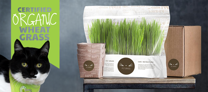 Packaging for Whisker Greens Pet Grass