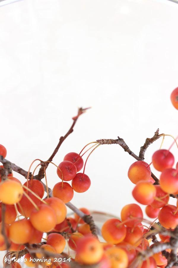 Befruchtungsäpfel Südtiroler Apfel Blumenfreitag Herbstdekoration