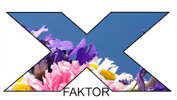finaleplass i x-faktor