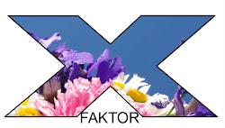 finaleplass i x-faktor