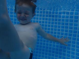 Jack fotografato sott'acqua