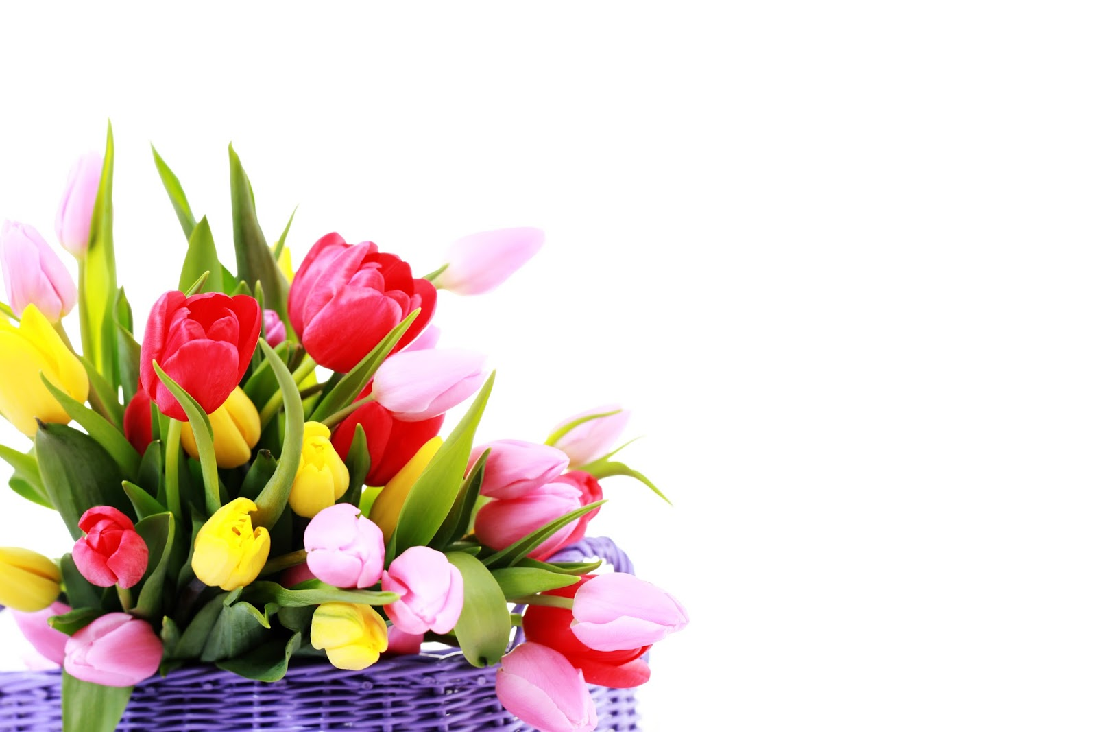 Imagenes de arreglos de flores de tulipanes auto design tech - Fotos de rosas de colores ...