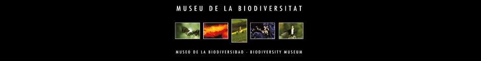 Museo de la Biodiversidad de Ibi