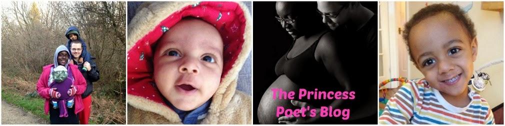 The Princess Poet's Life Adventures