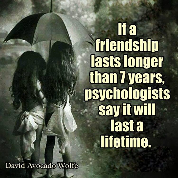 Long Quotes About Life And Love And Happiness And Friendship : If a friendship lasts longer than 7 years, psychologists say it will ...