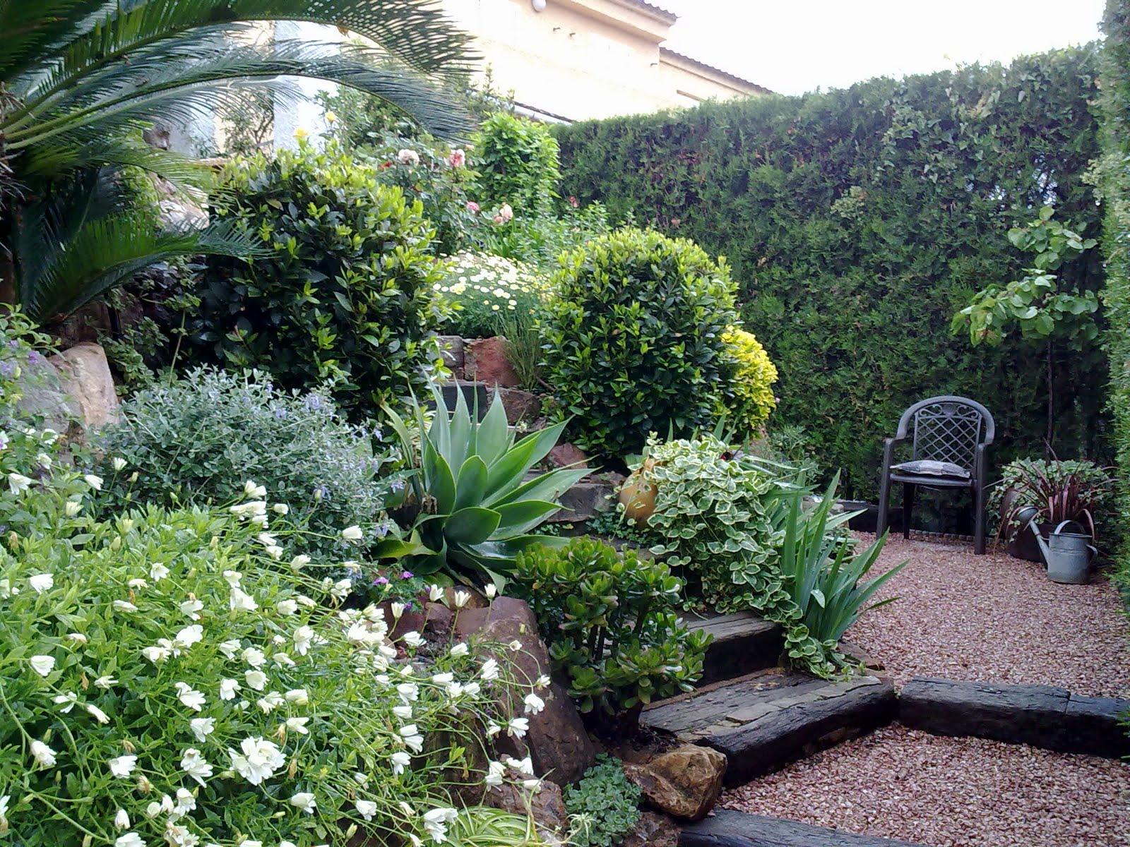 Una primavera m s guia de jardin for Jardines de primavera