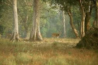 Phen Wildlife Sanctuary