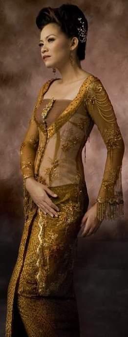 http://4.bp.blogspot.com/-NC359A9HK1E/TVNlSmkItKI/AAAAAAAAAK0/RLMi_bo-7Sk/s1600/brown-kebaya-modern-trend.jpg