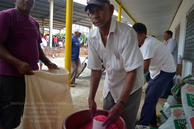 Agricultores recebem sementes e herbicida