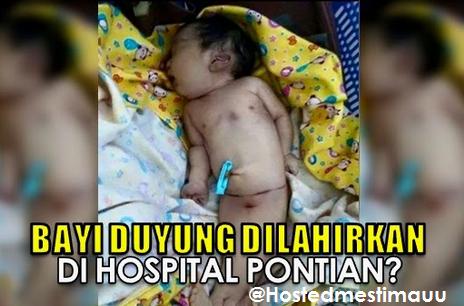 Heboh gambar bayi duyung di Pontian Johor