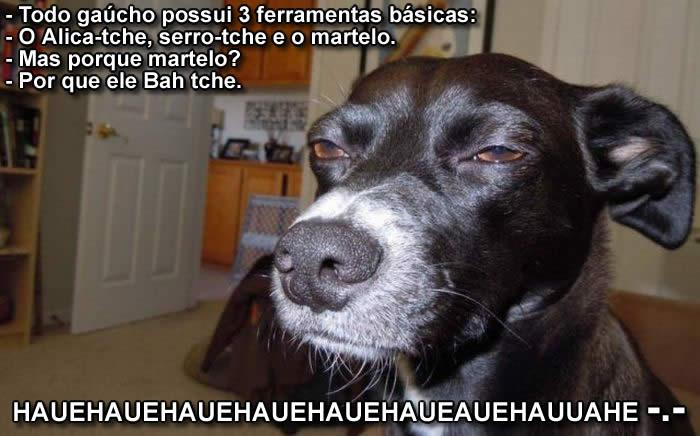 Piadas.... - Página 2 Cachorro-gaucho