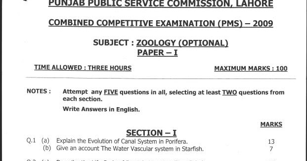 Css past papers 2013 essay