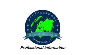 المحترف للمعلومات