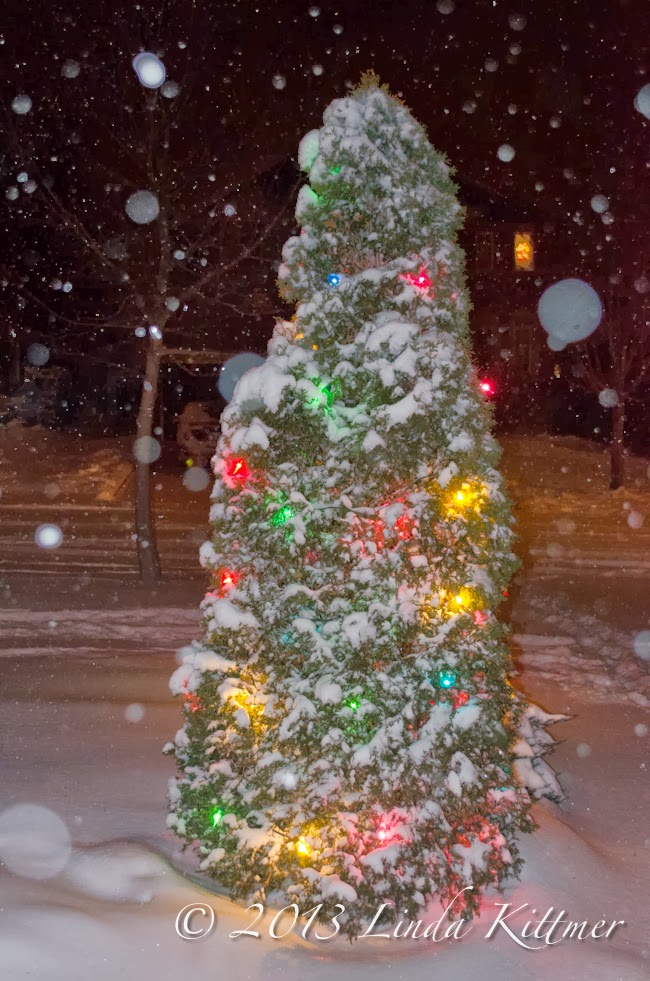 I Love How The Flash Captured The Falling Snow, But The Shot Without The  Flash Gives More Depth And Colour To The Lights.