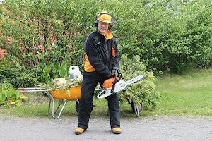 Pihapuut nurin edullisesti Tampereen ja Pirkanmaan talousalueella talonmiespalvelu@gmail.com