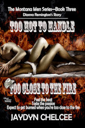 TOO HOT TO HANDLE/TOO CLOSE TO THE FIRE