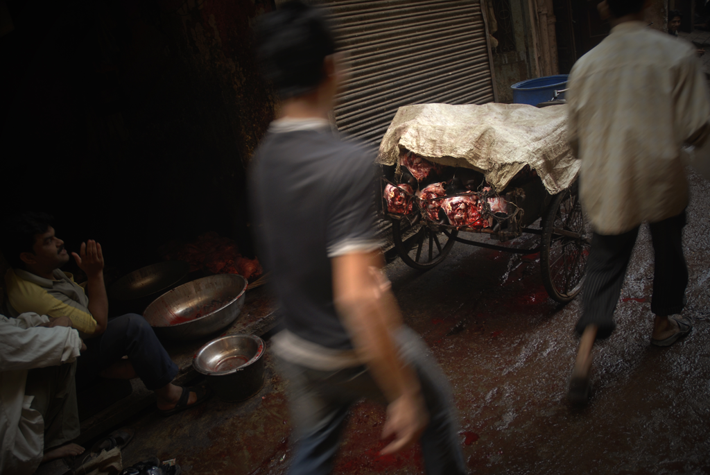 This image depicts a scenery outside of a slaughterhouse in Delhi in India