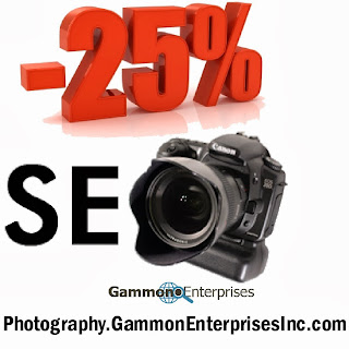 http://gammonenterprisesinc.com/photography-seo-marketing-photographers-search-engine-marketing.php