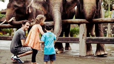 wisata bali zoo