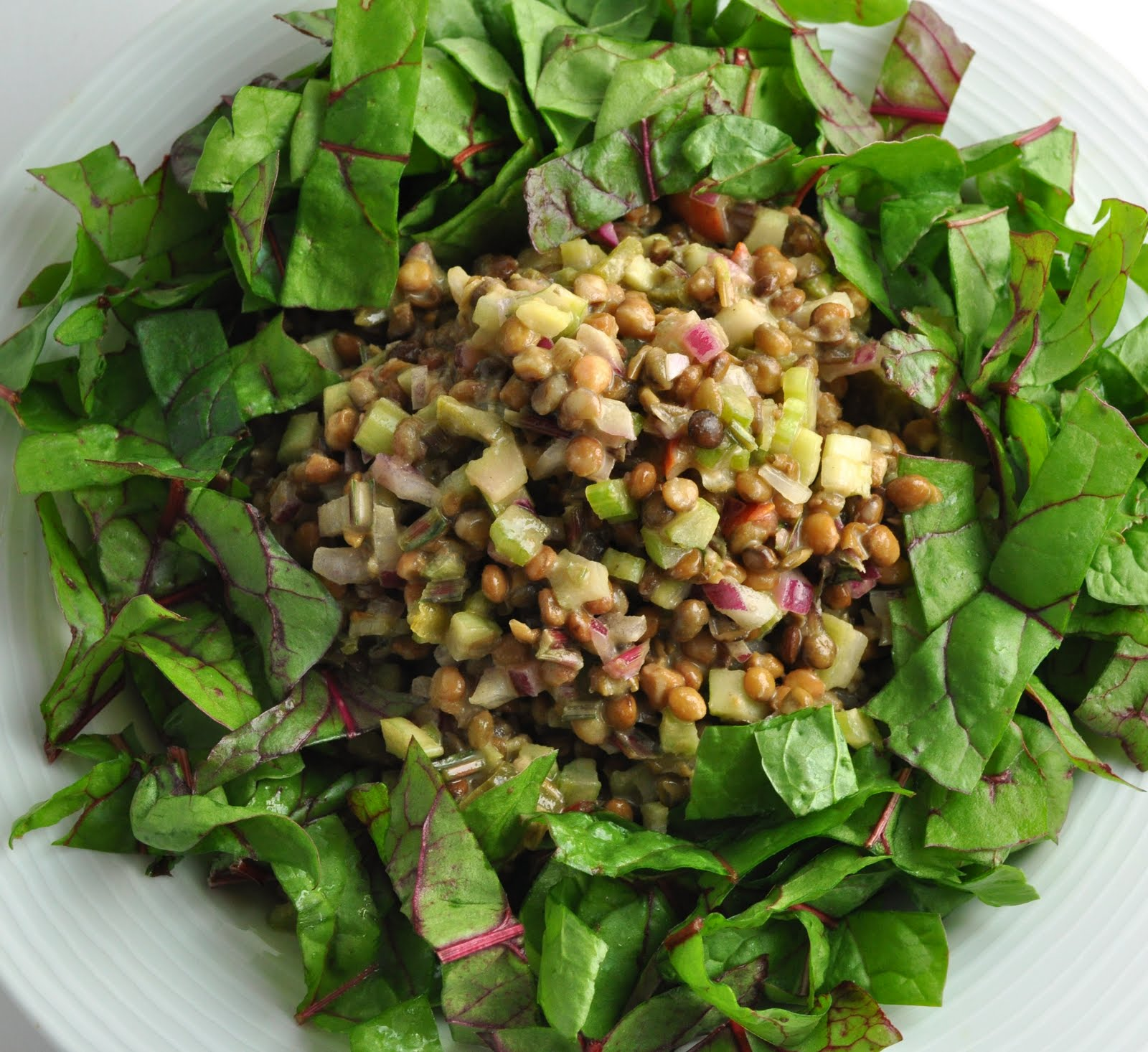 vegan ascent: Fast Lentil Salad