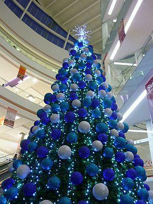 Blue christmas trees 1 - Arboles de navidad decorados ...