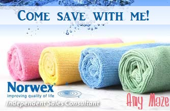 Living and Learning at Home Norwex Cleaning with Kids