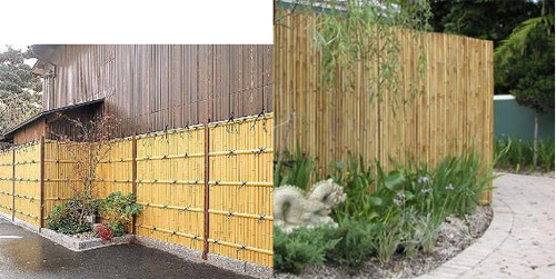 Bamboo Fencing6