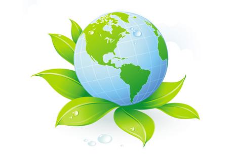 Environment Wellness