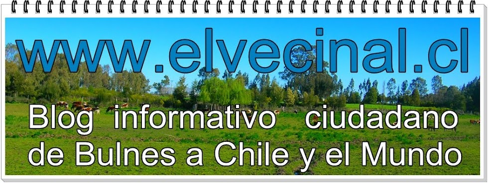 www.elvecinal.cl
