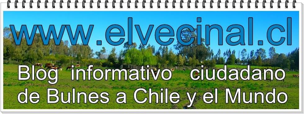 www.elvecinal.cl