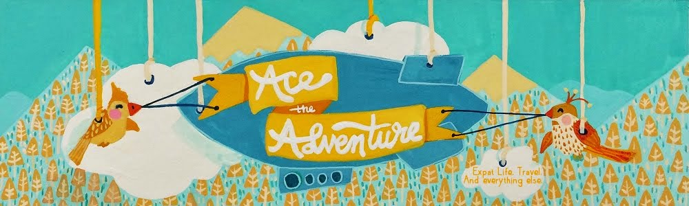 Ace the Adventure