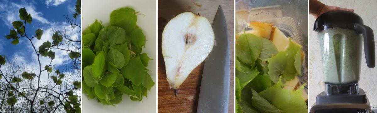 Zubereitung Birnen-Lindenblätter-Smoothie