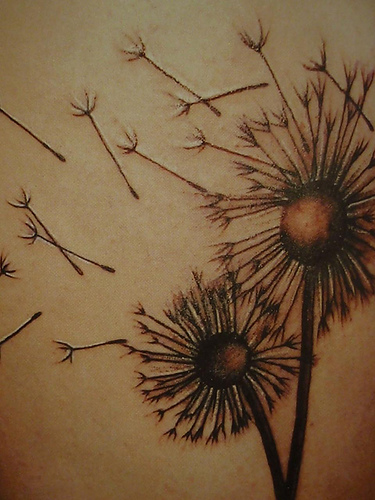 labels dandelion tattoo pictures to pin on pinterest tattooskid. Black Bedroom Furniture Sets. Home Design Ideas