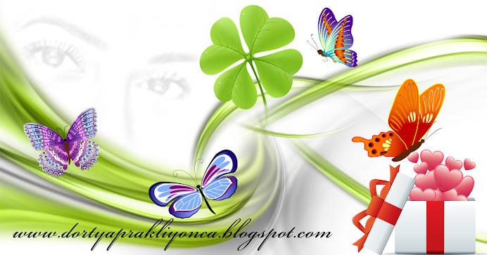 dortyaprakliyonca.blogspot.com