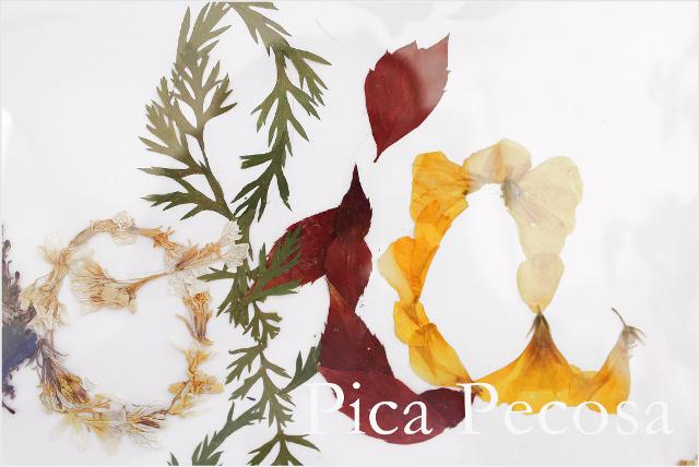 cuadro-con-nombre-hecho-flores-secas-prensadas-diy-12